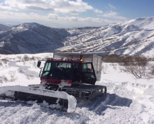 Shimamaki Cat Skiing