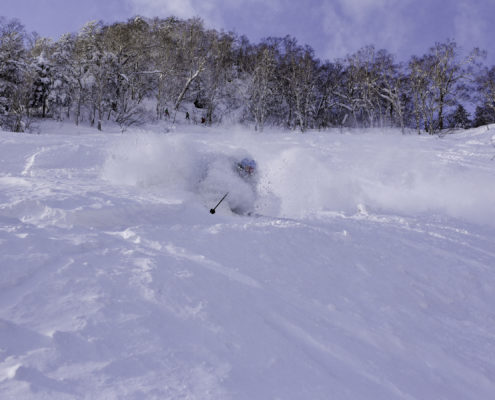Powder Hunter Japan