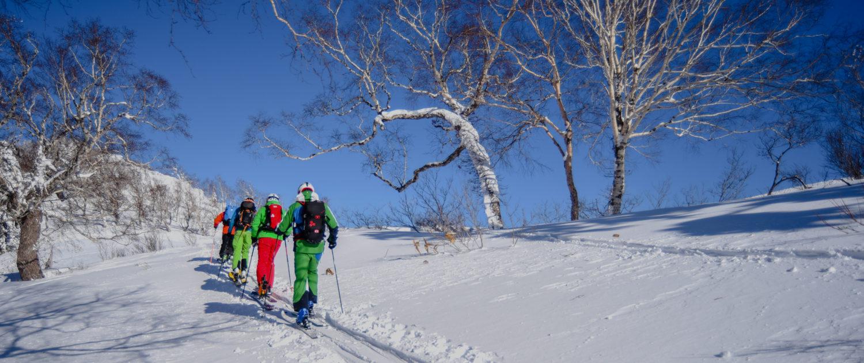 Backcountry Ski Touring Hokkaido
