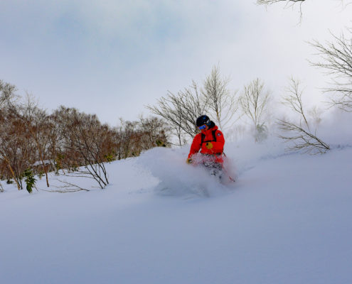 Cat Skiing at the House of Powder