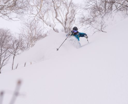 Skier in Shimamaki