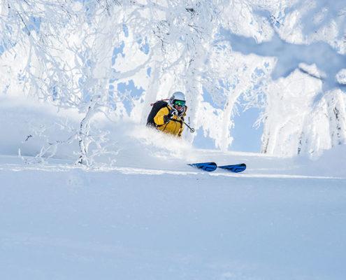 Heli Skiing Japan